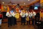 Mariachi Band Wednesday, March 19th 5:30 to 8:30 pm